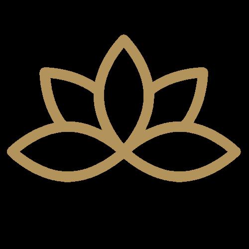 Life direction coaching logo